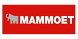 Mammoet (Vietnam)Co.,Ltd